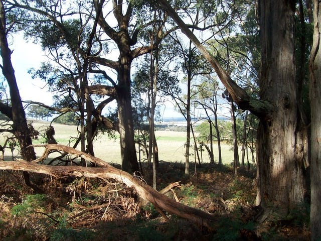 Lot 29, Cemetary Lane, Mount Egerton, Vic 3345