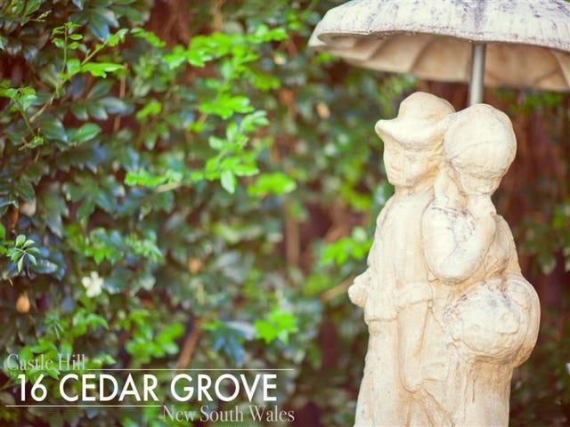 16 Cedar Grove, Castle Hill, NSW 2154