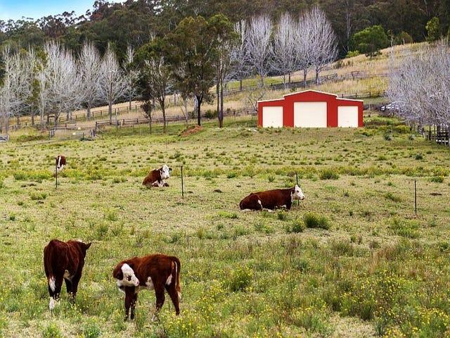 582 Yarramalong Rd, Wyong Creek, NSW 2259