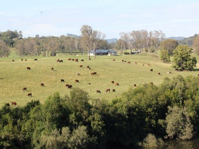 361 Gloucester Road, Burrell Creek, NSW 2429