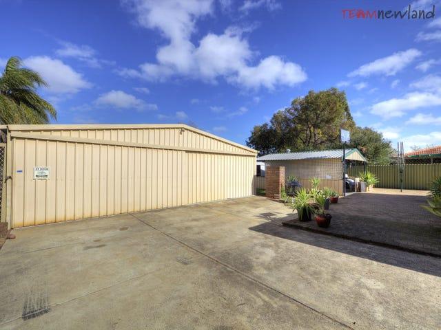 14 Calluna Way, Forrestfield, WA 6058
