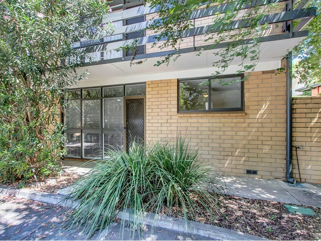 6/88 Sussex Street, North Adelaide, SA 5006