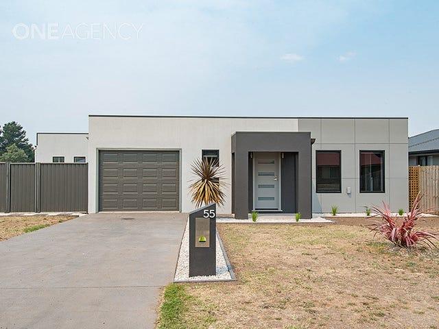 55 Cromwell Street, Perth, Tas 7300