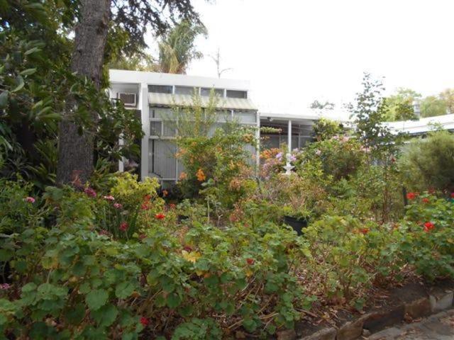 3 Eliza Place, Panorama, SA 5041