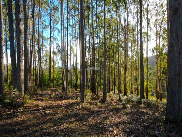 221 Kelcey Tier Road, Spreyton, Tas 7310