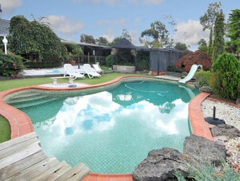Photo of a freeform pool from a real Australian home - Pool photo 702780