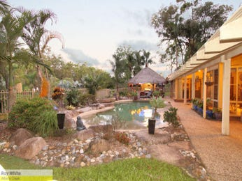 Photo of a tropical pool from a real Australian home - Pool photo 1098388