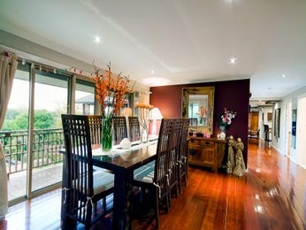 Classic dining room idea with floorboards & floor-to-ceiling windows - Dining Room Photo 8814953