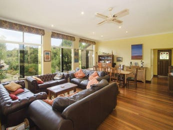 Yellow living room idea from a real Australian home - Living Area photo 7391533
