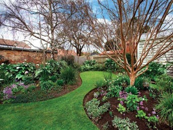 Australian native garden ideas for Back garden designs australia