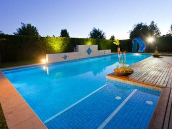 Freeform pool design using bluestone with decking & decorative lighting - Pool photo 794901