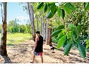 Lot 57, 6 Pinnacles Drive, Glass House Mountains, Qld 4518