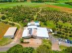 Wavehill Farm 592 Cudgen Road, Cudgen, NSW 2487