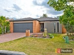 78 Waterlily Circuit, Carseldine, Qld 4034