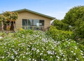 51 Cotton Street, Latrobe, Tas 7307