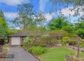 9 Koala Road, Blaxland, NSW 2774