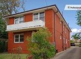 1 & 3/87 ROBINSON Street, Wiley Park, NSW 2195