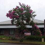 155A March Street, Richmond, NSW 2753