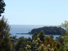 L3 Richardsons Drive, Eaglehawk Neck, Tas 7179