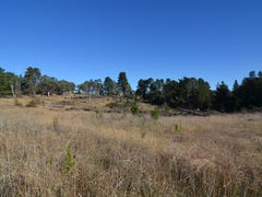 Lot 15 Forest Ridge Drive, Wallerawang, NSW 2845