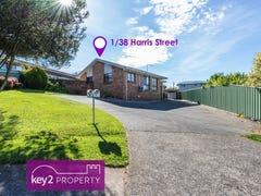 1/38 Harris Street, Summerhill, Tas 7250