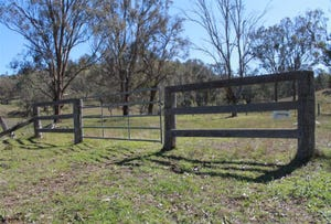 Lot 221. Woolshed Road, Blandford, NSW 2338