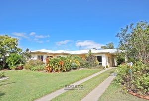 10 Palm Close, Mareeba, Qld 4880