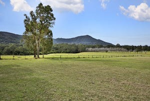 Lot 2 Illaroo Road, Tapitallee, NSW 2540