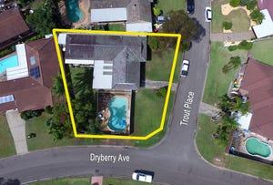 6 Dryberry Avenue, St Clair, NSW 2759