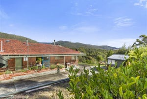2351 Channel Highway, Lower Snug, Tas 7054