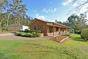 621 Delmore Road, Wattle Hill, Tas 7172