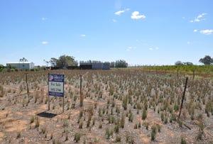 Gorton Drive, Kangaroo Lake, Vic 3581