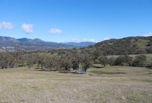 Lot 221 Woolshed Road, Blandford, NSW 2338