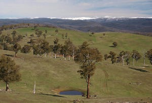 Lot 3, 651 High Forest Road, Omeo, Vic 3898