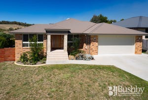 55 Richings Drive, Youngtown, Tas 7249