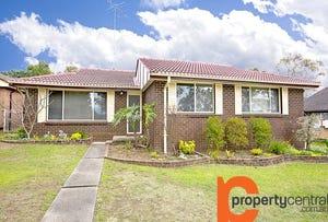 20 Glenbrook Street, Jamisontown, NSW 2750