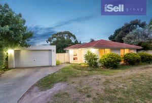13 Daniel Solander Drive, Endeavour Hills, Vic 3802