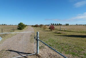 LOT 2 Calarie Rd., Forbes, NSW 2871