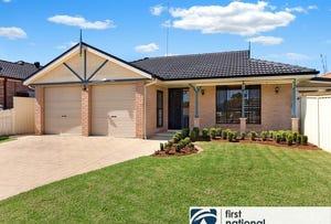 25 Hillside Circuit, Cranebrook, NSW 2749