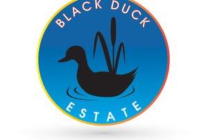 Lot 17 Kate Court, Black Duck Estate, Murrumba Downs, Qld 4503