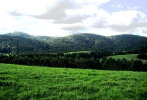 605 Dome Road, Dorrigo Mountain, NSW 2453