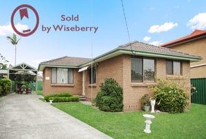 45 Coonanga Ave, Budgewoi, NSW 2262