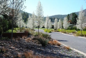 11 Mountain Mist Drive, Bright, Vic 3741