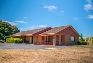 9 Mountain View Crescent, Grindelwald, Tas 7277