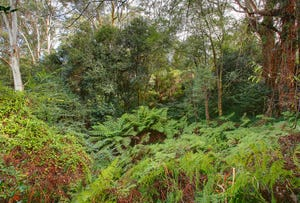 Lot 36 Gullies Road, Bundanoon, NSW 2578