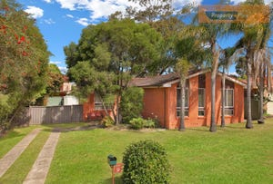 9 Todman Place, St Clair, NSW 2759
