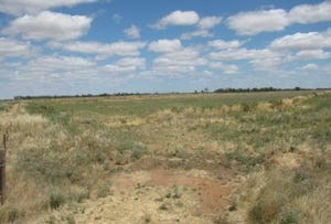 Lot 148, Farm 406 Saunderson Road, Leeton, NSW 2705