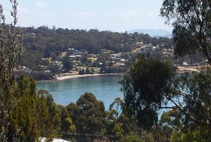 Lot 56 Lagoon Road, White Beach, Tas 7184