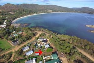 80 Apex Point Road, White Beach, Tas 7184