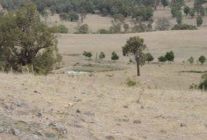 Lot 1 Mulgowrie Road, Binda, NSW 2583